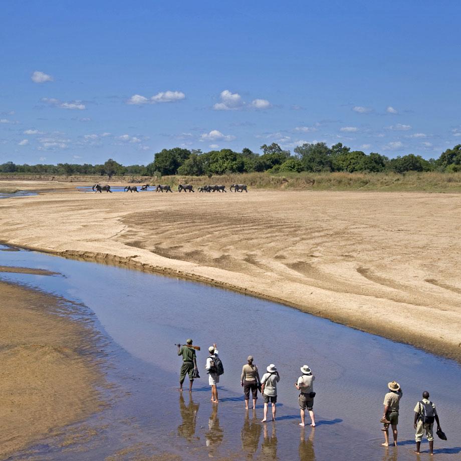 viaggi safari africa
