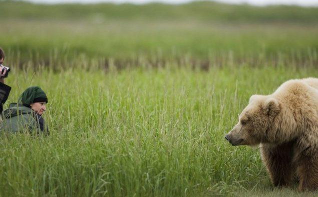 Alaska: Into the Wild