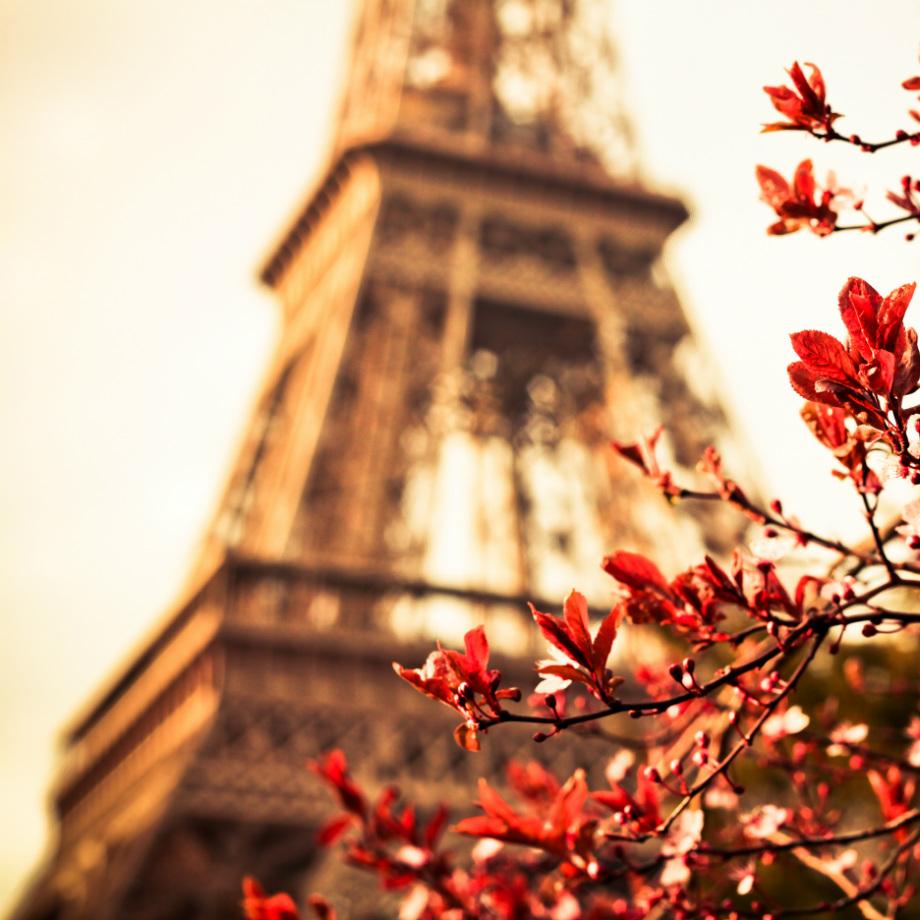 tour operator europa francia