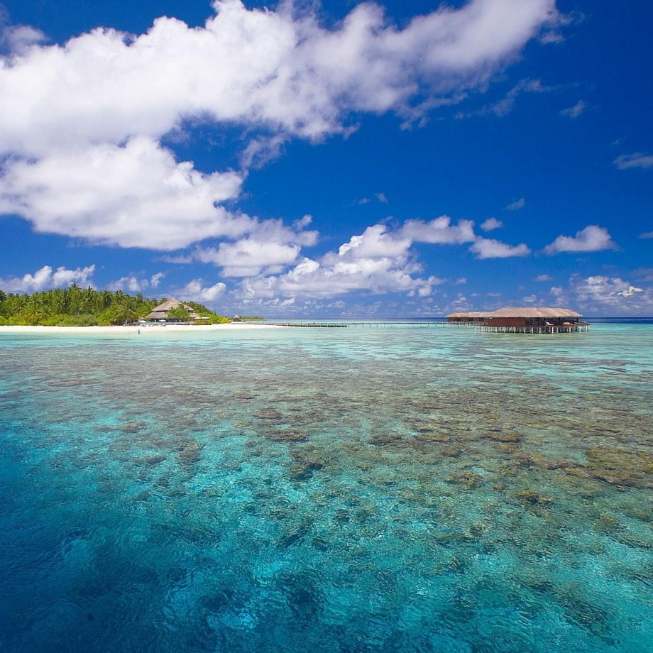 mare-maldive-filitheyo-island-resort-2