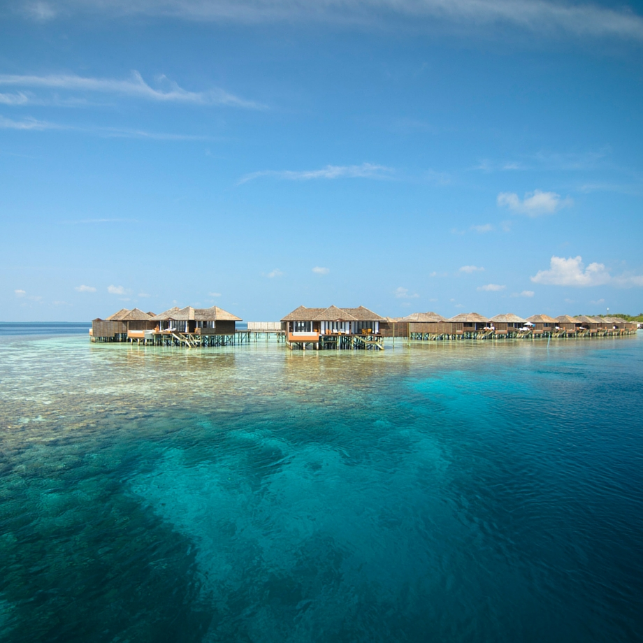 mare-maldive-lily-beach-resort-&-spa-7