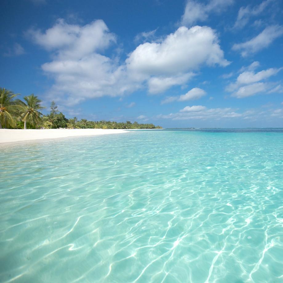 mare-maldive-lux-maldives-9