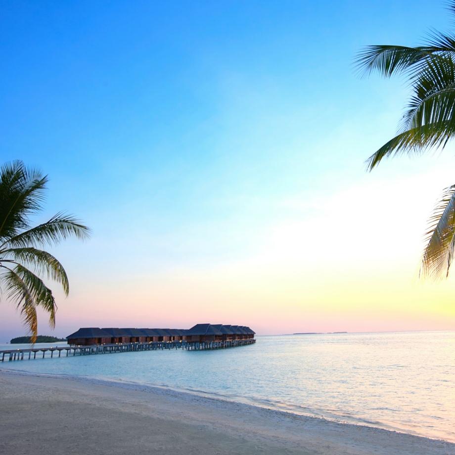 mare-maldive-lux-maldives