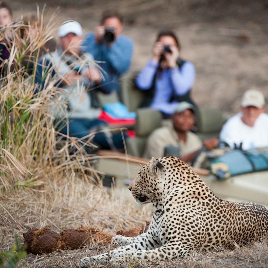 viaggi incentive africa safari