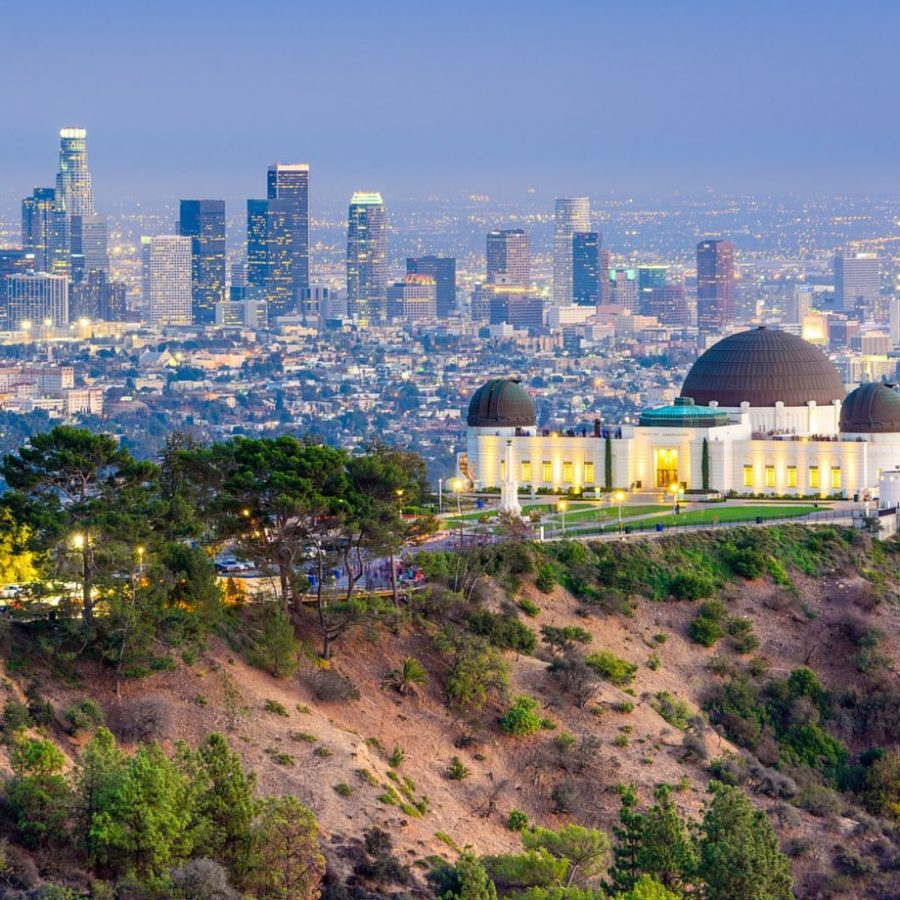 mice incentive stati uniti los angeles