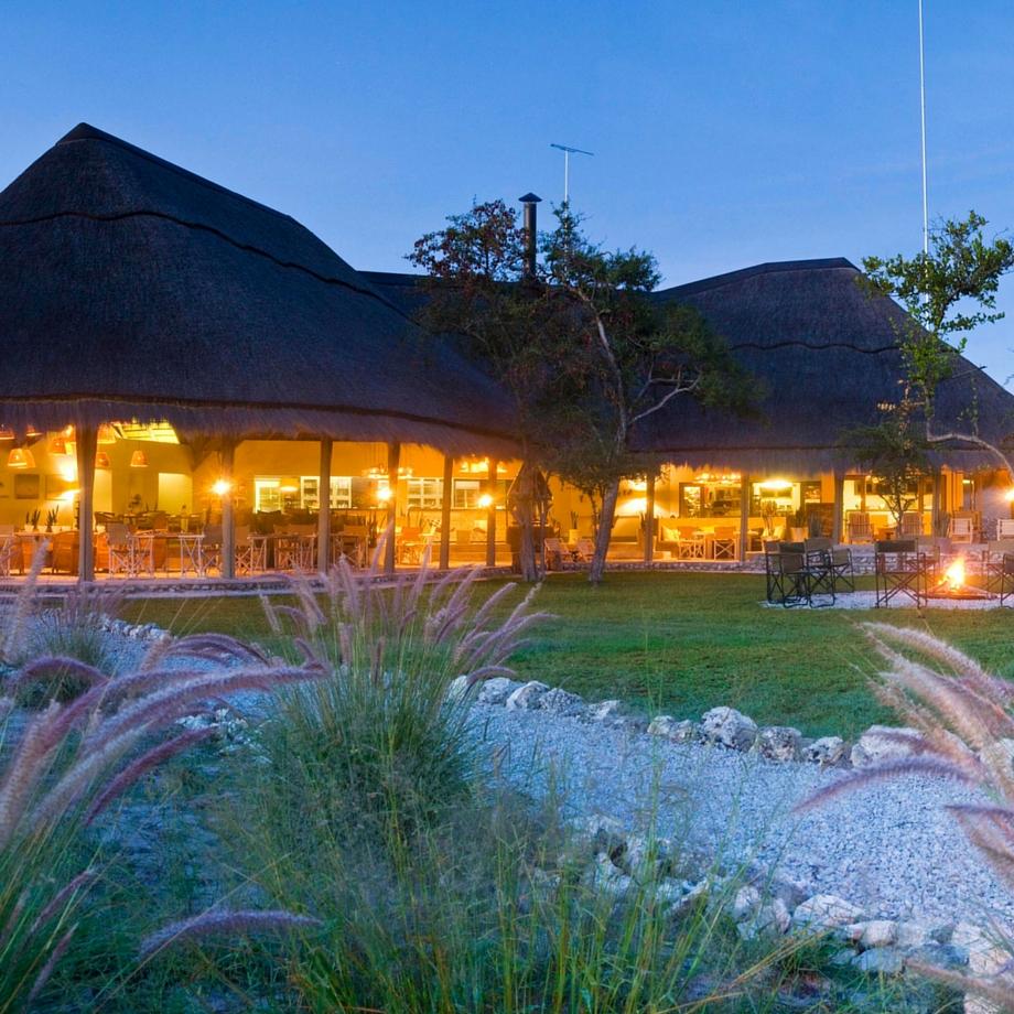 namibia africa safari mushara bush camp luxury