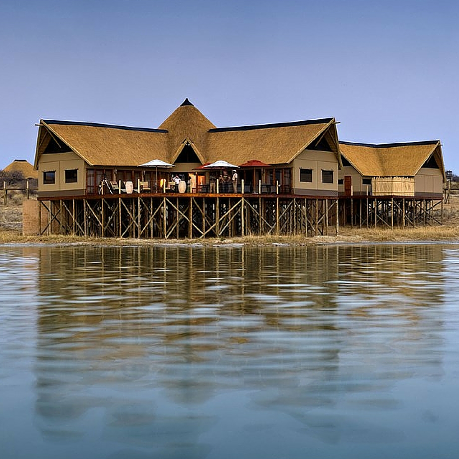 safari africa namibia luxury onkoshi camp