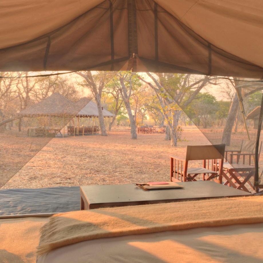 safari africa botswana beyond chobe under canvas