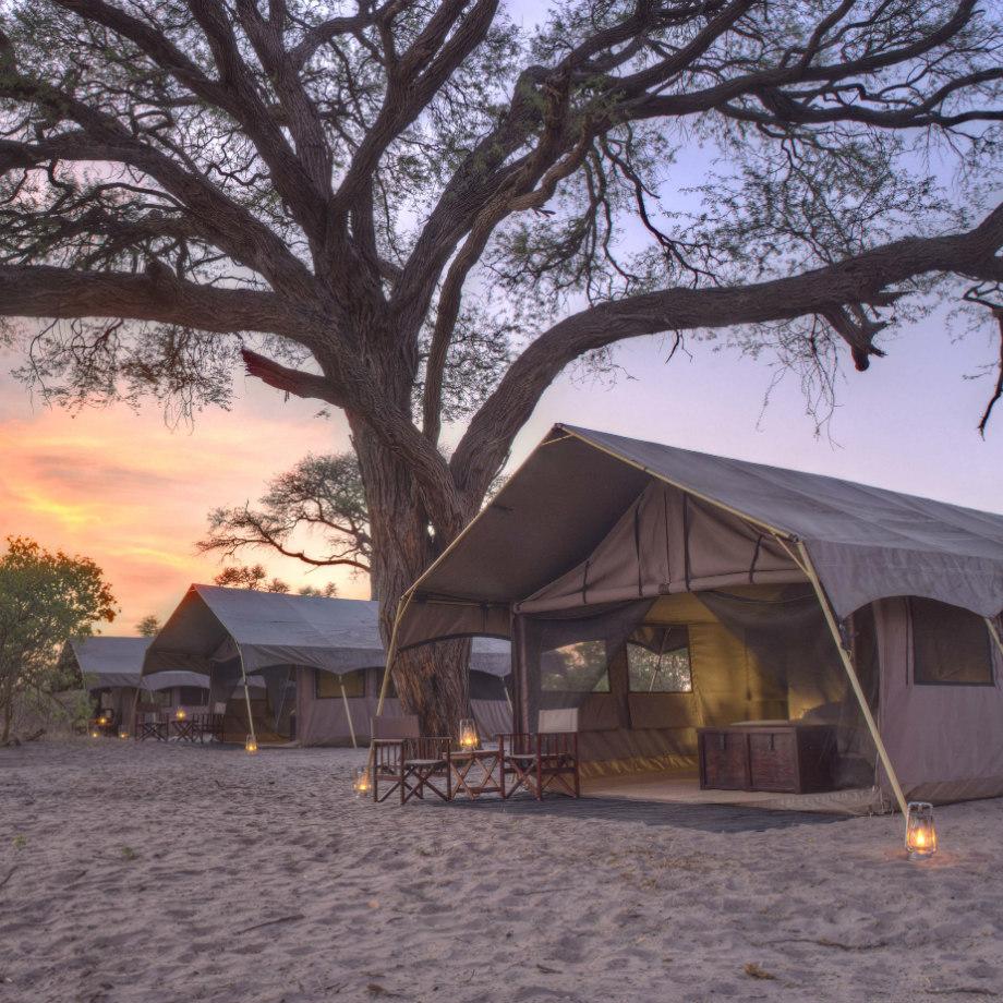 safari africa botswana beyond savute under canvas safari lodge