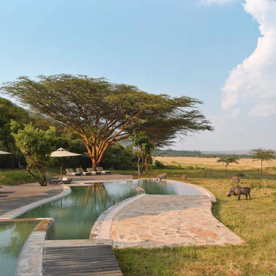 safari africa kenya beyond kicha tembo masai mara tented camp