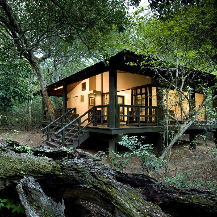 safari africa viaggi di lusso sudafrica andbeyond phinda forest lodge