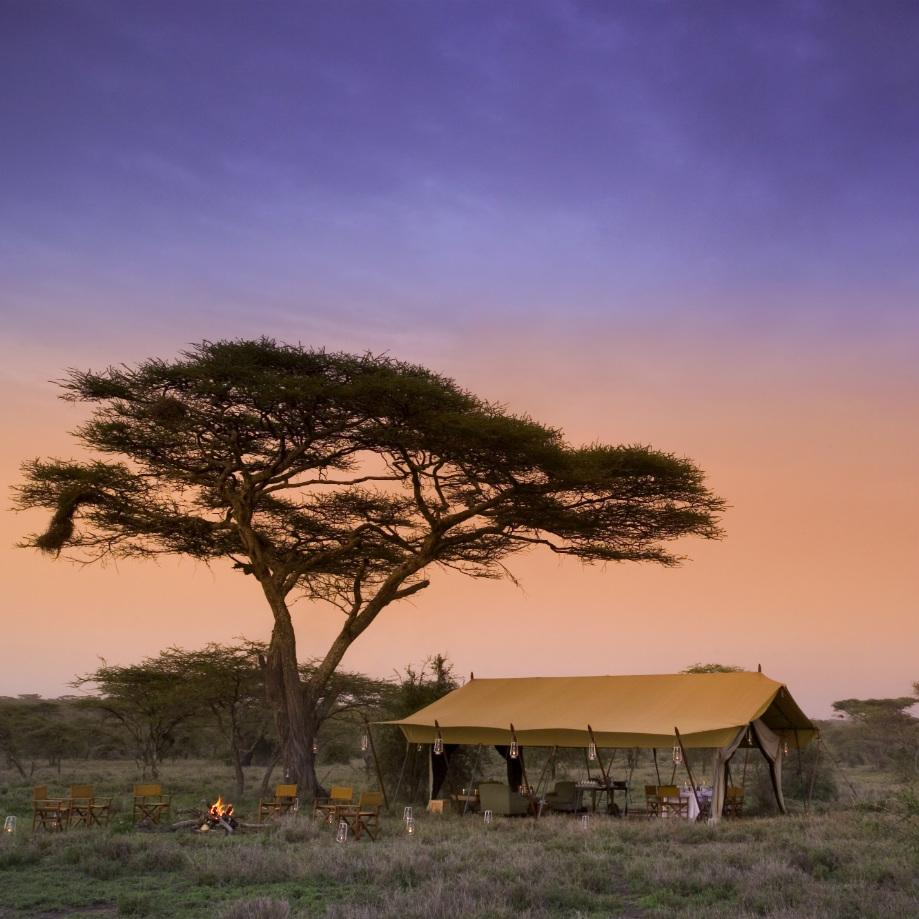 viaggi di lusso in africa con safari serengeti under canvas tanzania