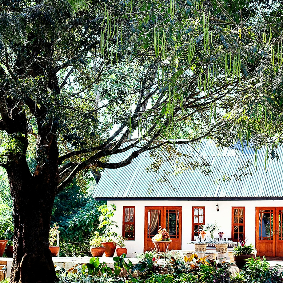 safari-tanzania-manor-at-ngorongoro-11