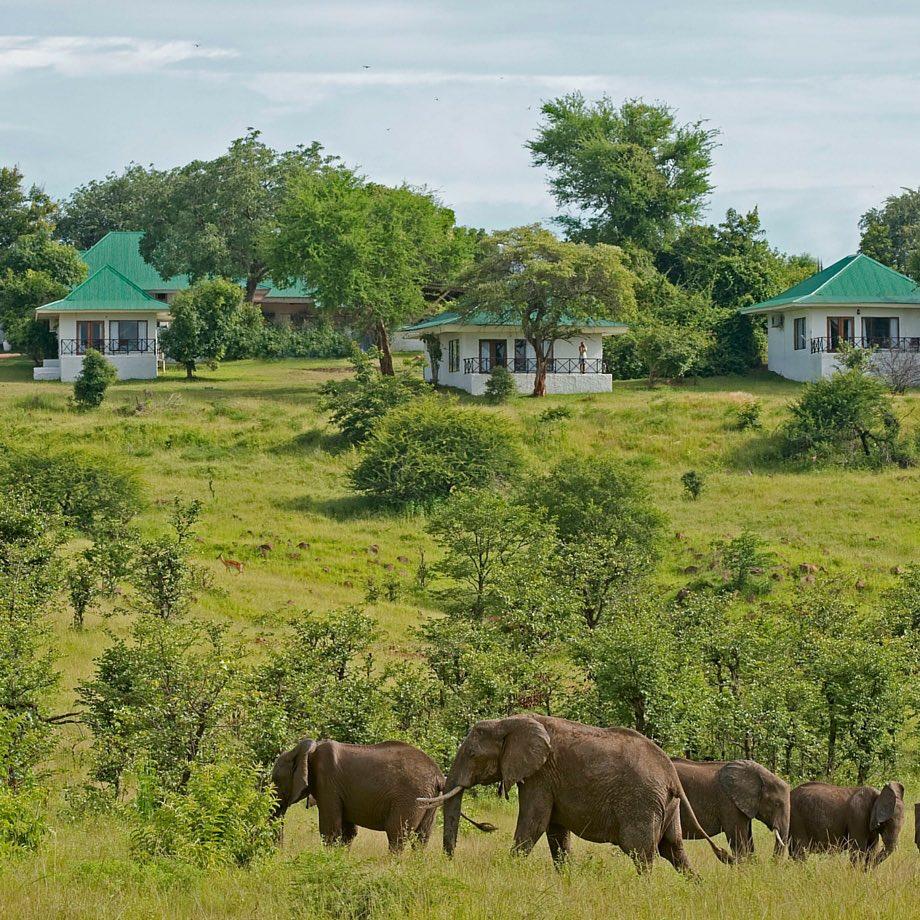 tour operator safari zambia sanctuary chichele presidential
