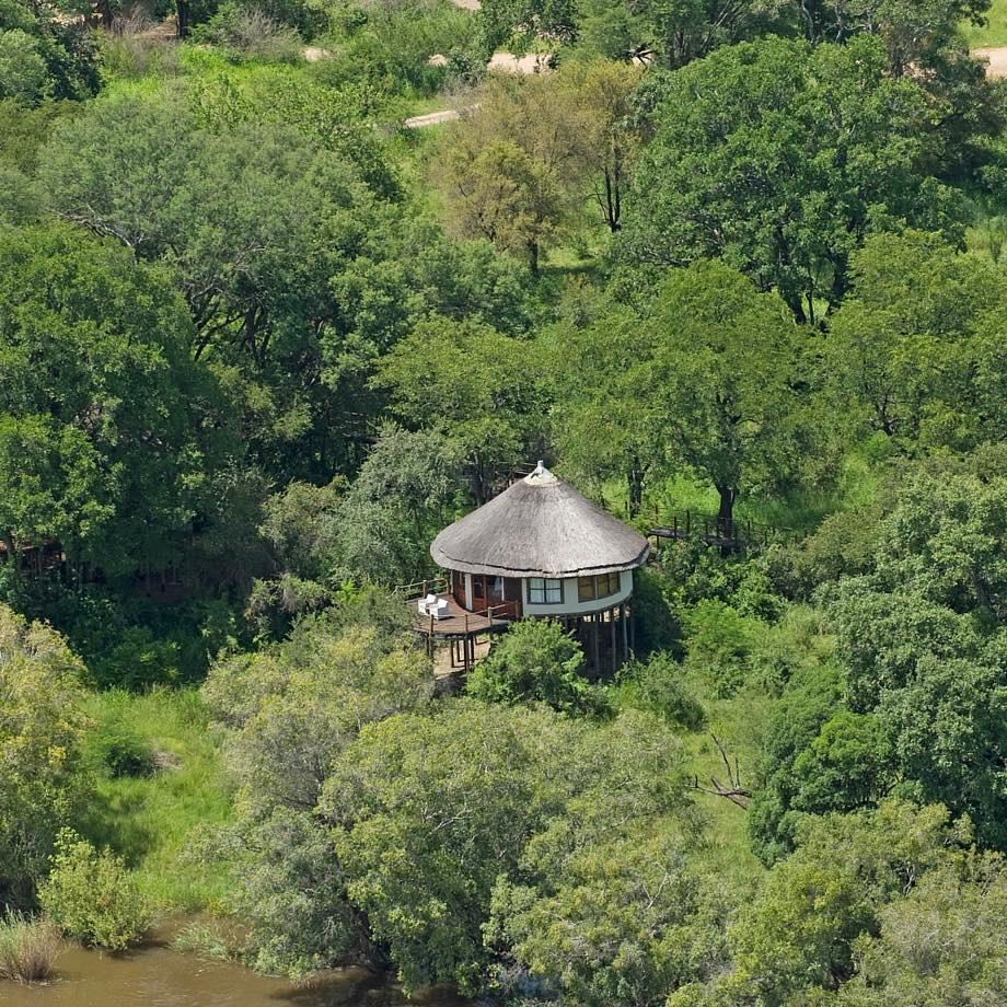 safari-zambia-sanctuary-sussi&chuma6