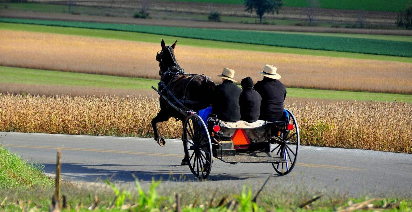 Vivere nell'800: La Comunità Amish