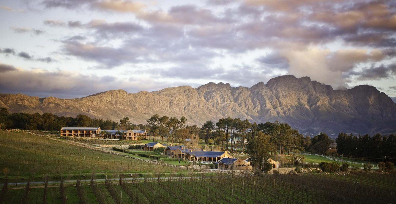 Sudafrica: La Regione dei Vigneti