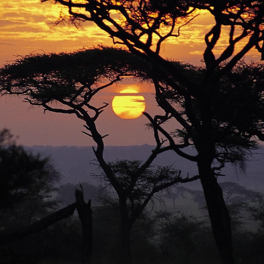 tanzania-africa-safari-sanctuary-swala-camp-luxury-3