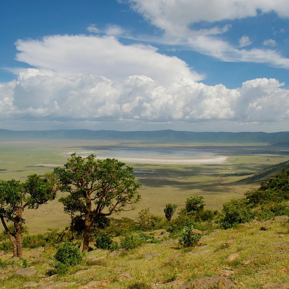 Cratere del Ngorongoro