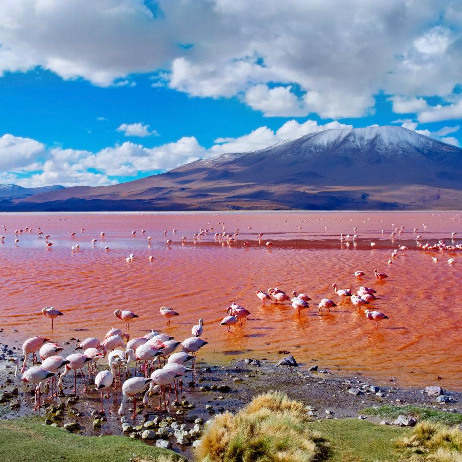 Laguna Colorata
