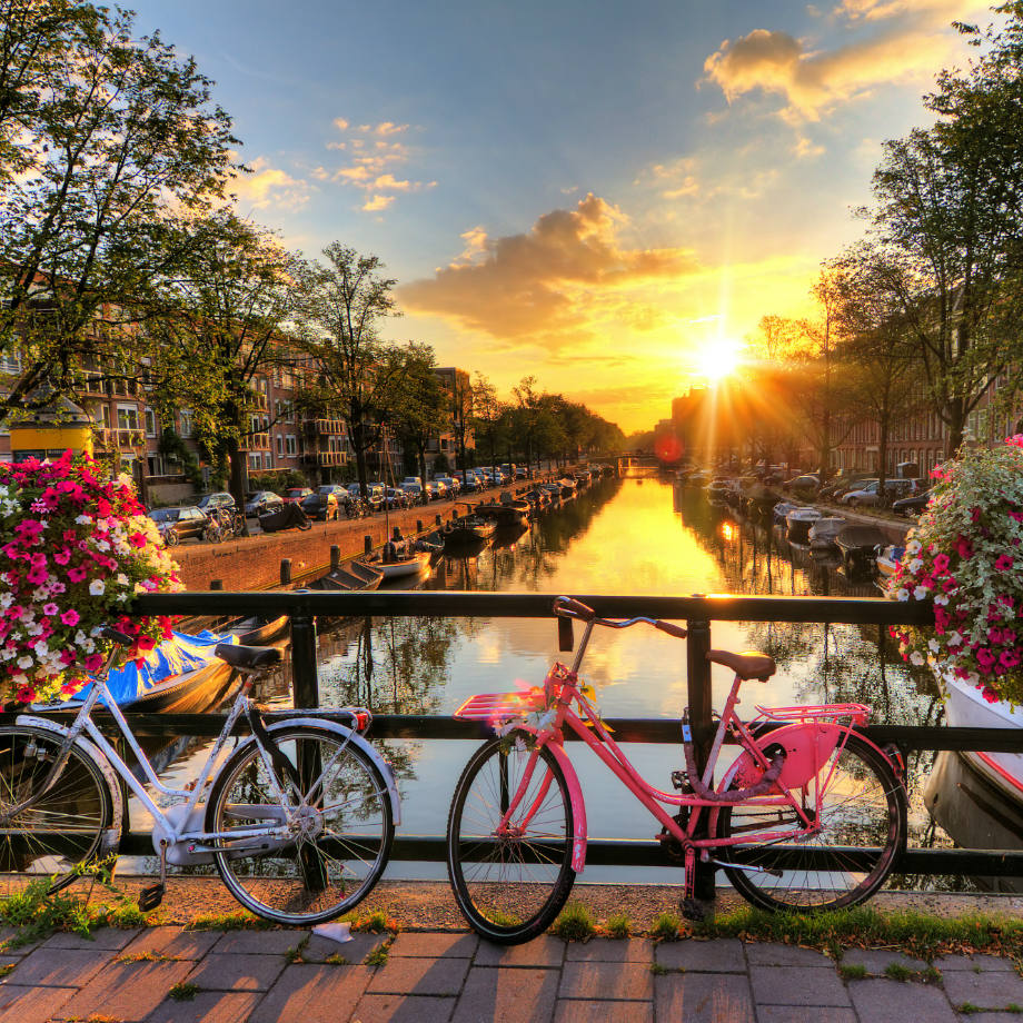 tour organizzati olanda amsterdam